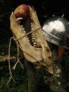 Skull--apple